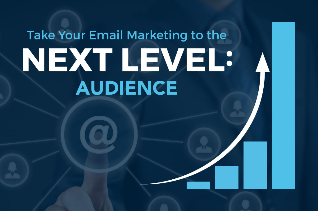 Email Marketing Audience