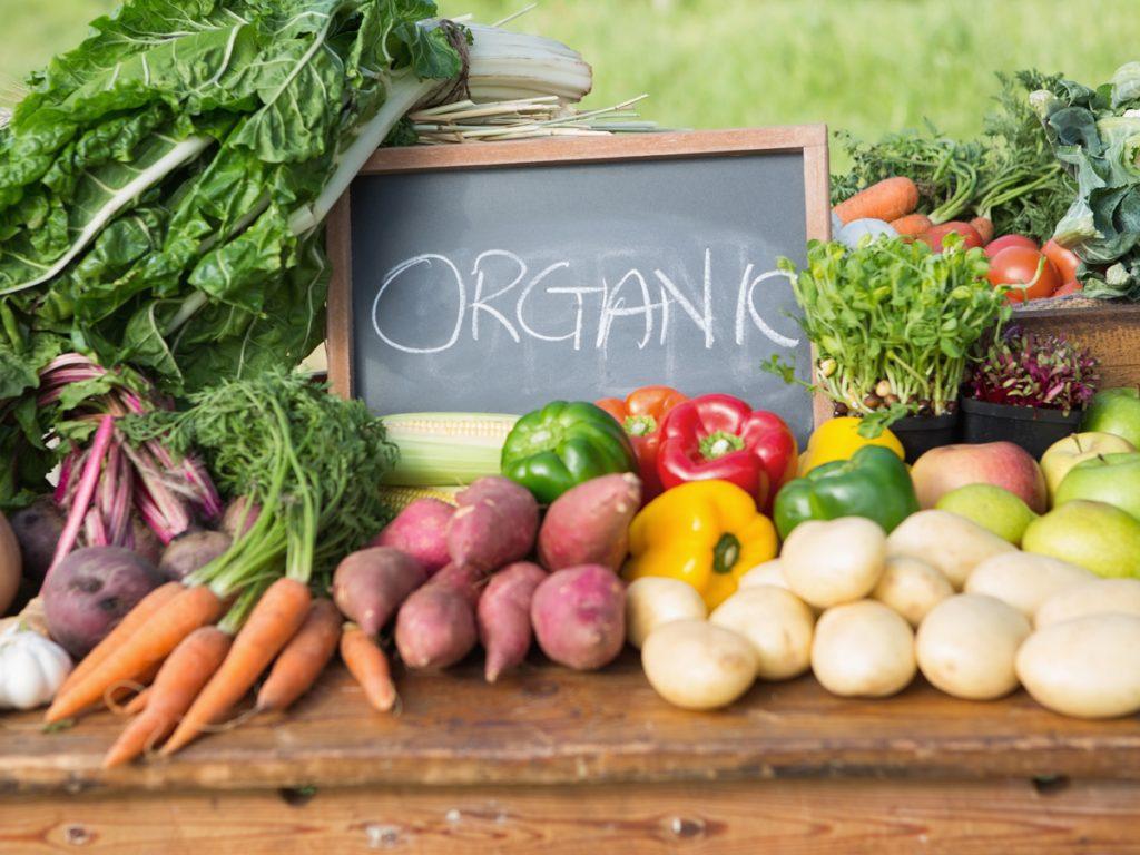 Grow organic traffic to grow leads online