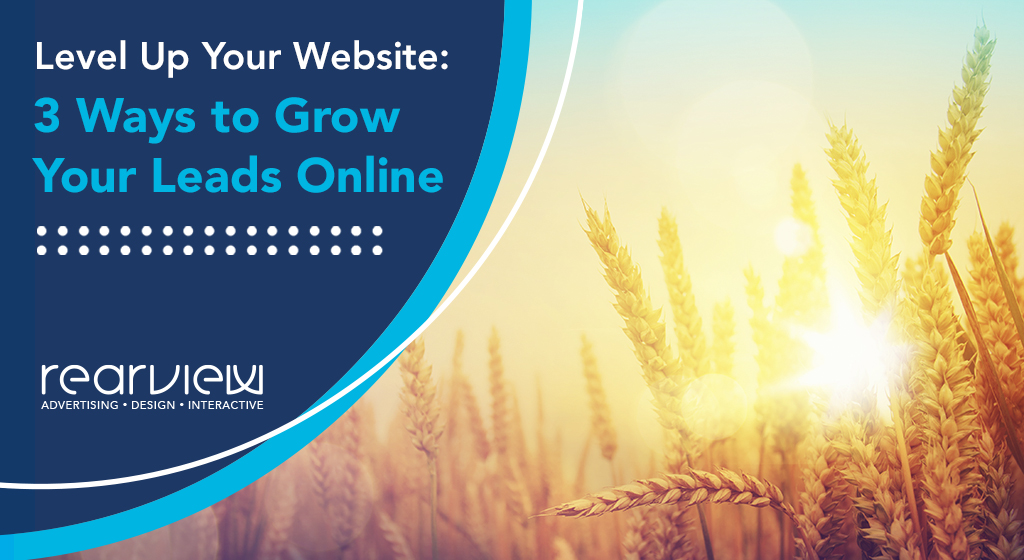 Level Up Your Website: 3 Ways to Grow Your Leads Online